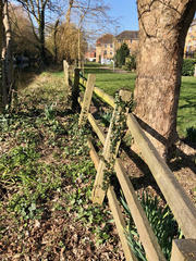 fence03.jpg
